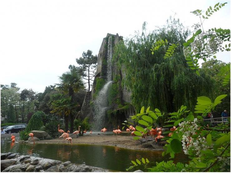 zoo-de-la-palmyre.jpg